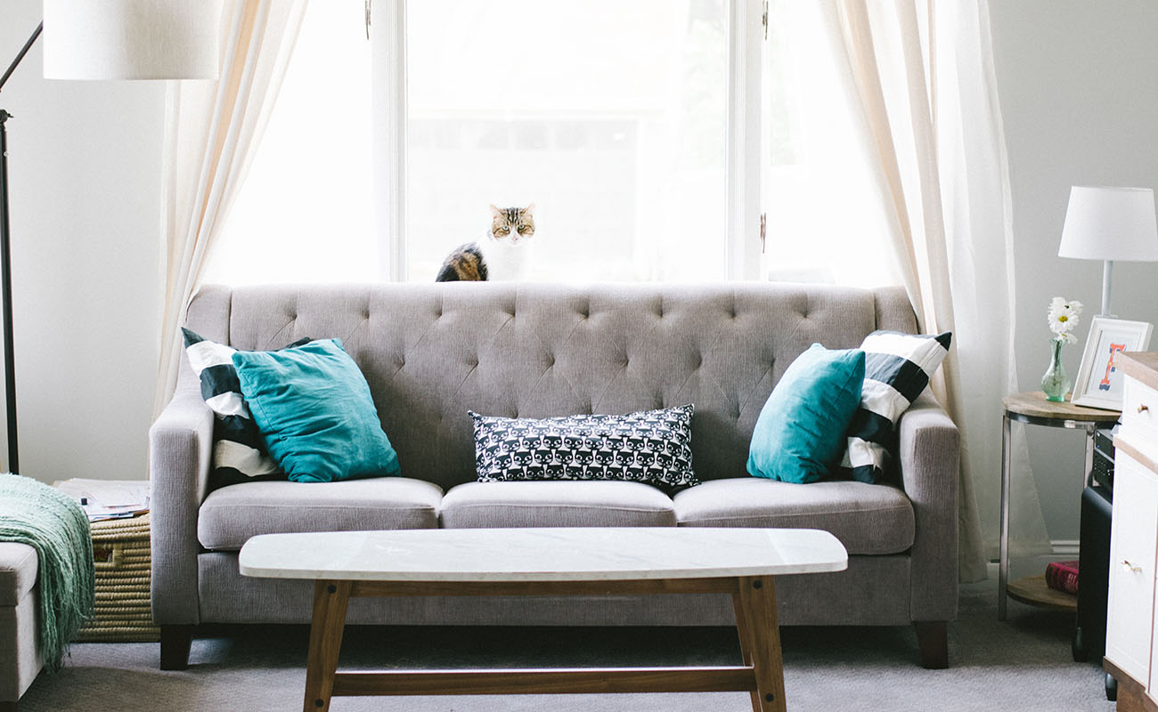 house cleaning clermont
